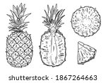 a set of illustrations of... | Shutterstock .eps vector #1867264663