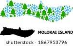 Vector Mosaic Map Of Molokai...