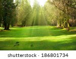 green lawn with trees in park... | Shutterstock . vector #186801734