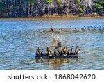 Apex  North Carolina Usa 12 05...