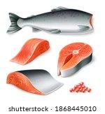 vector realistic raw salmon... | Shutterstock .eps vector #1868445010
