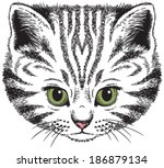 kitten portrait  vector sketch... | Shutterstock .eps vector #186879134