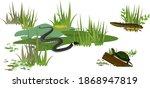 Grass Snake Or Natrix Natrix ...