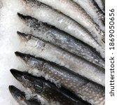 Macro Photo Frozen Pike Fish....
