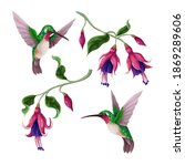 hummingbirds and tropical...   Shutterstock .eps vector #1869289606