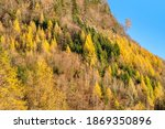 rocky mountains and autumnal... | Shutterstock . vector #1869350896