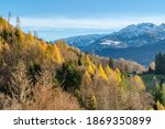 rocky mountains and autumnal... | Shutterstock . vector #1869350899