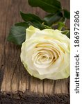 wood background with roses  | Shutterstock . vector #186972806
