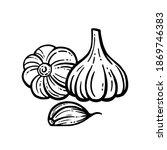 vector illustration of garlic...   Shutterstock .eps vector #1869746383