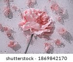 Red Roses Under The Glass Plate ...