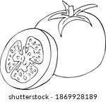 tomato.  tomatoes on a branch.... | Shutterstock .eps vector #1869928189