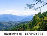 Landscape Of Forested Mountains....