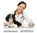 Stock photo young positive brunette veterinary woman with spaniel taking notes on tablet pc 187053929
