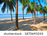 sandy beach with coconut palm...   Shutterstock . vector #1870693243