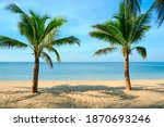 sandy beach with coconut palm...   Shutterstock . vector #1870693246