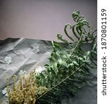 herbarium of dried flowers and... | Shutterstock . vector #1870801159