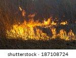 Grass Fire In The Field
