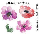 watercolor vector flowers....   Shutterstock .eps vector #187111748