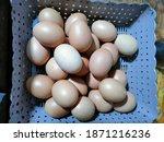chicken eggs with brown basket   Shutterstock . vector #1871216236