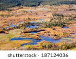 Aerial View Of Wet Marshland I...
