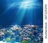 sea or ocean underwater coral... | Shutterstock . vector #187125293
