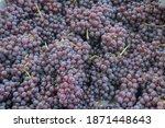 Fresh Grape Currants Or Zante...
