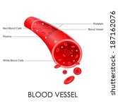 vector illustration of diagram...   Shutterstock .eps vector #187162076