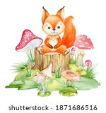 Squirrel  A Cute Animal In A...