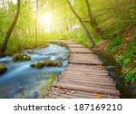 boardwalk in the park | Shutterstock . vector #187169210