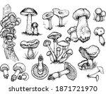 mushrooms mushroom menu ... | Shutterstock .eps vector #1871721970