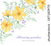 Greeting Card With Beautiful...