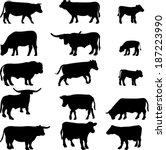cow collection   vector...