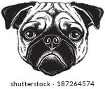 dog portrait  black and white... | Shutterstock .eps vector #187264574