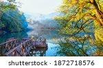 Autumn Forest Landscape...