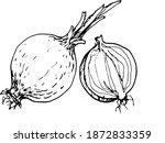 onions  vegetables set  harvest....   Shutterstock .eps vector #1872833359