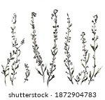 watercolor illustration of... | Shutterstock . vector #1872904783