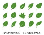 set of green various leaves.... | Shutterstock .eps vector #1873015966
