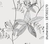 pattern floral seamless  eps 10   Shutterstock .eps vector #187302170