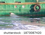 Barge Frozen In Ice And Snow At ...
