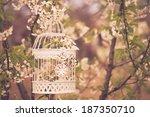 Bird Cage On The Cherry Blossom ...