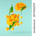 Small photo of Fresh ripe mango with leaves falling in the air isolated on turquoise background. Food levitation concept. High resolution image