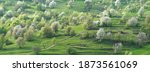 panorama of a spring landscape...   Shutterstock . vector #1873561069