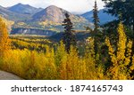 Fall In Denali National Park ...