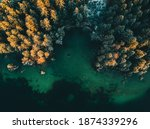 Colored Autumn Trees From A...