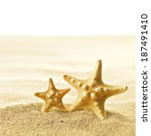 shell and starfish on sandy... | Shutterstock . vector #187491410