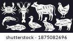butcher guide. meat cuts scheme ...   Shutterstock .eps vector #1875082696