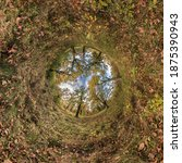 Tiny Planet Transformation Of...