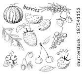 hand drawn set of berries | Shutterstock . vector #187541153