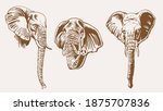 graphical vintage set of... | Shutterstock .eps vector #1875707836