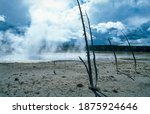 Steam From A Hot Spring In...